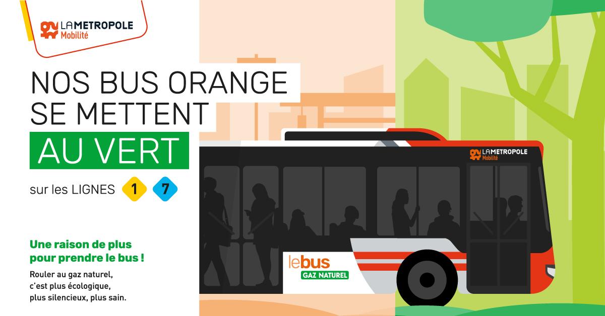 Nos bus orange se mettent au vert